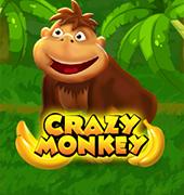 Crazy Monky